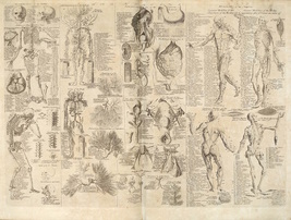 Diagrams from antique manual of osteopathy_Kew Osteopathic Clinic